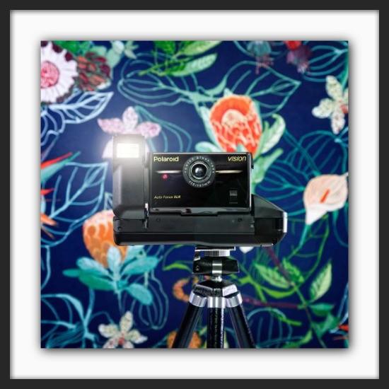 Cameraselfie Polaroid Vision