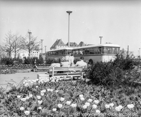 Idylle auf dem Heumarkt 1955