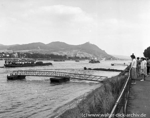 Blick Richtung Drachenfels und Königswinter 1955