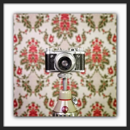Cameraselfie Altix